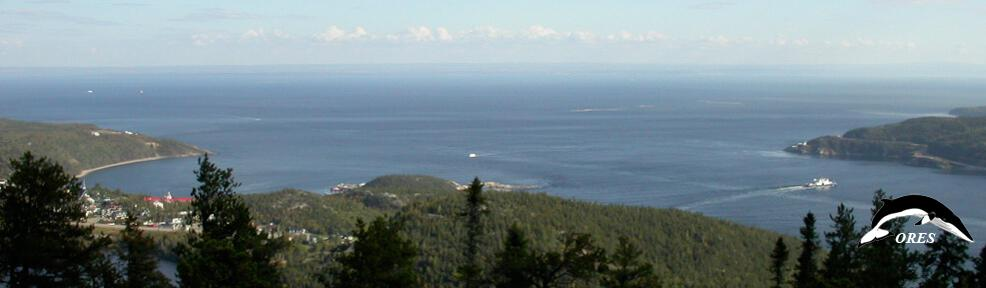 images/phocagallery/headers_ALL/01_home_header_saguenay fjord_282.jpg